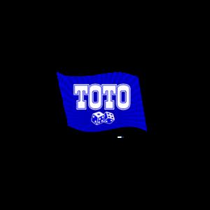 Обзор букмекерской конторы Тотобет